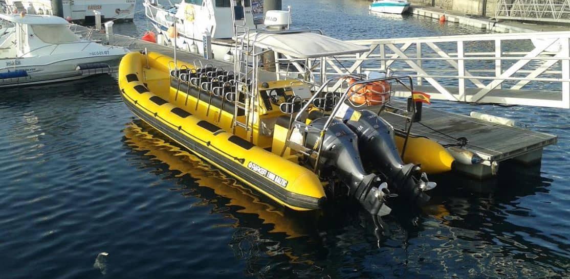 Waverider Wanzarote RIB experience dolfijnen tour Snorkelen Lanzarote 2