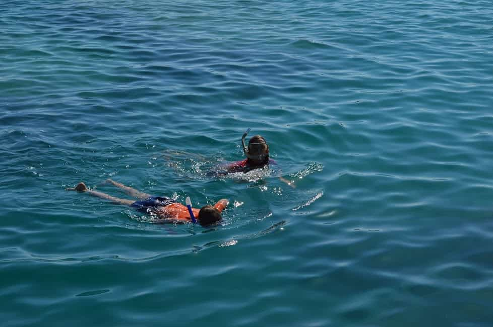 snorkelen Egypte veilig