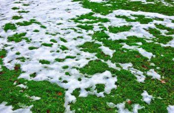 wintersport sneeuwgarantie smeltende sneeuw geen sneeuw skigebied